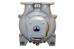 Picture for category Liquid Ring Pumps